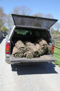 The rolled sod is loaded into a pickup.