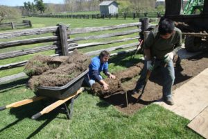 Fernando and Chhewang use shovels to lift and roll the sod, which will be used elsewhere on the property.