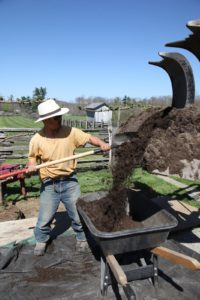 Next, the composted soil is brought in.