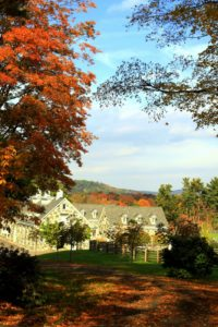 A year ago, the view down the carriage trail leading to the stable, was aglow with vibrant color.