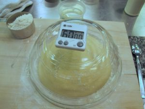 This is the pierogi dough resting beneath a glass bowl.