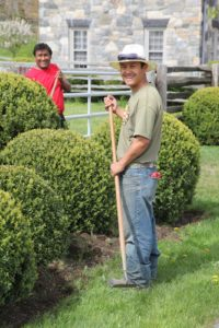 Pete and Chhiring are clearing the bed of weeds.