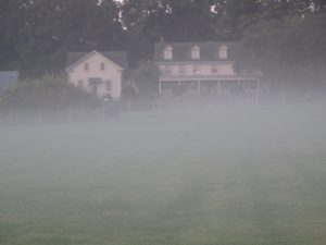 Walking back to my home, called the winter house - it's softened by the foggy mist.