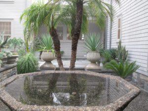 A lovely birdbath reflection