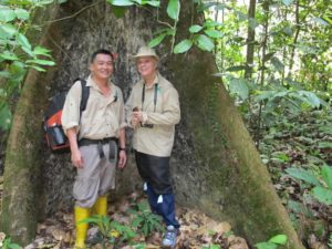 Edmundo, a guide and Memrie standing in the fold of an enormous tree