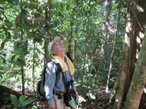 A fellow traveler - also staying at The Rainforest Lodge - looking at the gibbons