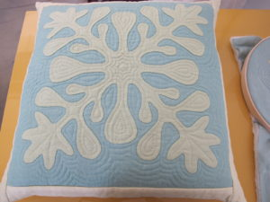 A finished echo quilted pillow