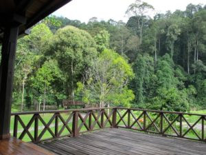 This is the view from the main lodge.