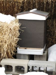 Once the dead bees were removed, the entrance reducer was put back in place where it will stay until warmer temperatures arrive.