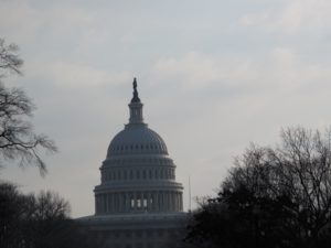 The rotunda and dome of the capitol - one of America's most beautiful structures.