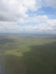 The vastness of Kruger National Park - 6.2,000,000 acres was mind boggling.