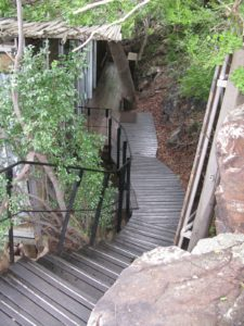 The stairway to my lodge - there are no fences in the park and late at night every guest needs an escort to get to the individual lodges, which are modern construction, built into the sides of the steep slopes down to the river.