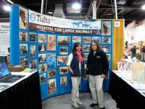 Tufts University is a prestigious school for veterinary medicine.