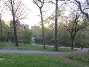 A view of The Pool in Central Park, just northwest of North Meadow and south of the Great Hill