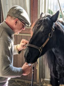 Brian works slowly, always talking to the horse to keep him relaxed. Banchunch is being a very good boy.