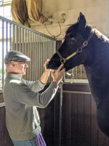 Brian, the lay equine dentist, has been practicing for more than 30-years. My horses know him well and are very comfortable around him. Brian always works in the horse stalls where they are most relaxed. Here he is with Sasa.