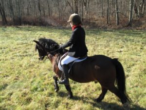 Bryan, Muffin's horse, was feisty and fun - a little Irish pony.
