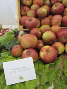 Apples from Migliorelli Farm  http://migliorelli.com/
