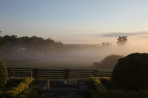 Through the mist towards the stable