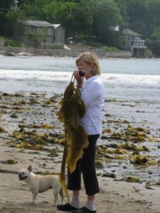 I loved my seaweed so much that I carried it for a long time.  It was so leathery.