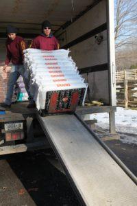 Bennie's crew unloading the heavy sacks.