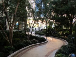 A winding path through gardens