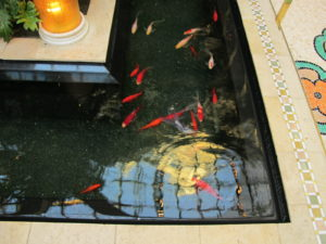 The pools are filled with koi.