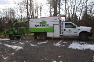 I've been using SavATree http://www.savatree.com/ for many years.