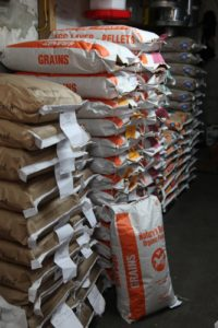 Nature's Best Organic Feed is what we use at the farm.