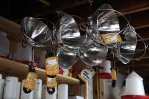 These are heat lamps like the ones we use in the chicken coops during cold weather.