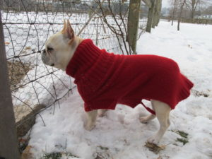 This red sweater is really well-made, but I need to shorten the tail end, if you see what I mean.