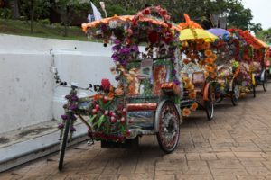 Tri-shaws are a favored way to travel along the crowded streets of Melaka.  Man powered and ostentatiously decorated, they are also musical.  We opted for a ride on one.