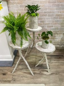 Here, we have the planters are on my Indoor/Outdoor Faux Bois Plant Stands. These plant stands have such a realistic all-over bark texture. Three faux-wood branches support a ringed top. I offer three sizes – 32-inches tall, 26-inches tall and 22-inches tall.
