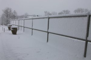 The garden fence looks as if someone spread icing on it.
