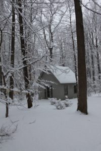 This is the little tucked away woodland shed.
