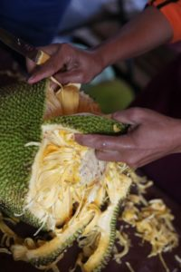 A closer look at the jack fruit