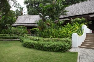 And of course, lush vegetation!