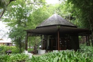 Ayurvedic and tradition Chinese medicinal treatments are offered at the resort.