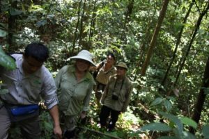 The guides carry communication radios and they heard from another group that Gibbon apes were in the area.  We ventured off the beaten path in search of them.