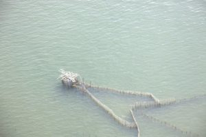 This framework is actually a large fish net.