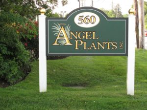 The entrance to Angel Plants, Inc.