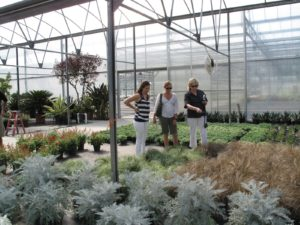 Heather, Andrea, and I admiring the carex in frosted and bronze - perennial grass