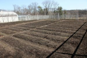 The vegetable garden is all clean and ready to be planted.  With warm weather, it's tempting to start, however, we can get frost right into May.