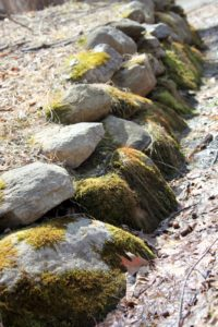 A moss-covered stone wall