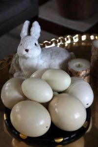Another bunny with goose and ostrich eggs