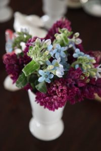 Tweetia and purple hyacinths in old shaker white glass goblets
