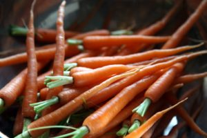 These carrots came straight from my cold house greenhouse, where they grow directly in the ground.