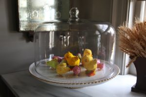Colorful chicks under a giant glass dome