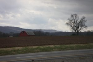 The farm land is fertile, rich, deep, and a bit clayey in these parts.  These are the Cumberland Mountains of Tennessee.