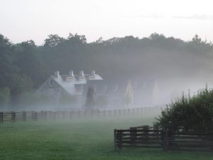 The stables shrouded in fog